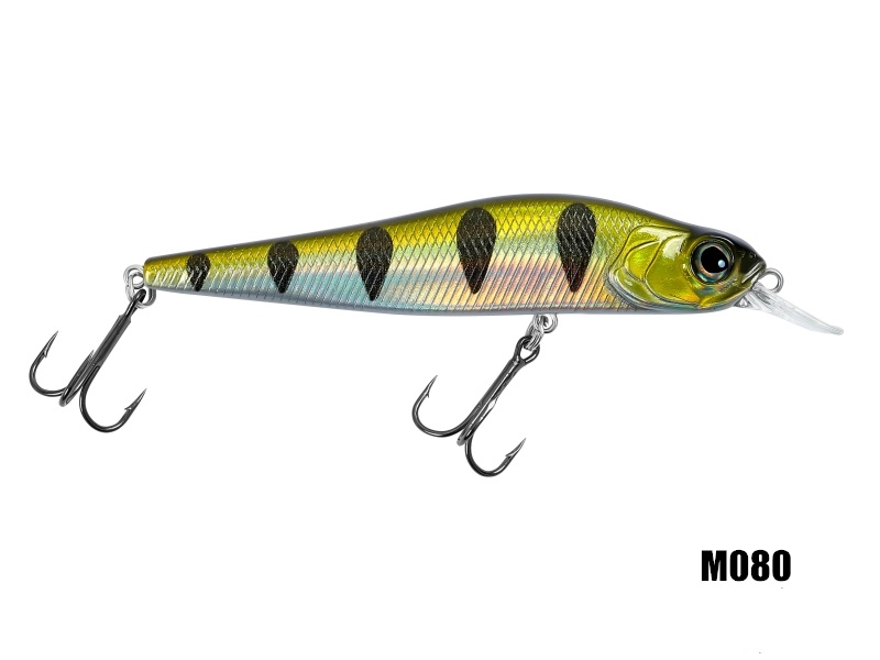 /upload/bpic/Big_Head_Minnow_M080.jpg